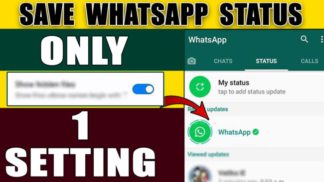 How to save WhatsApp status video and photos