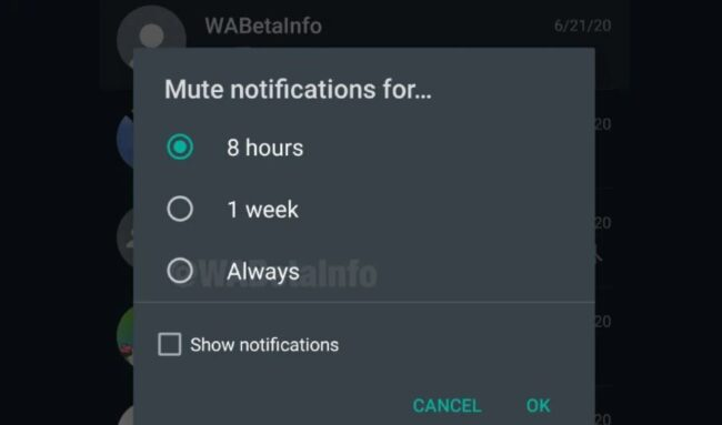 Upcoming WhatsApp Feature: Mute forever